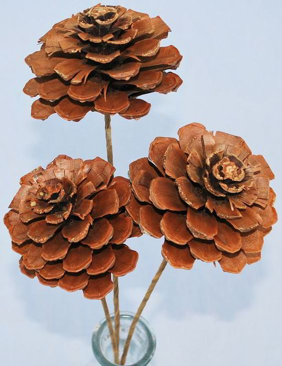 Pine Cone Projects 43 - 44+ Simple DIY Pine Cone Projects Ideas
